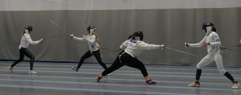 fencing in haapsalu